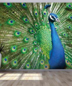 3D Wallpaper Animals Peacock