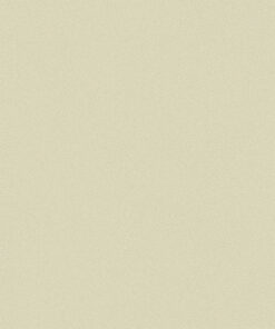 Belbien-BC-042-Shell-Gray