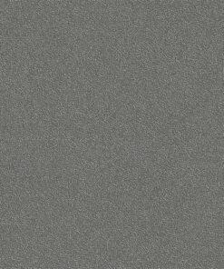Belbien-CO-197-Charcoal-Sablon