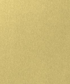 Belbien-FM-41-Gold-Spin